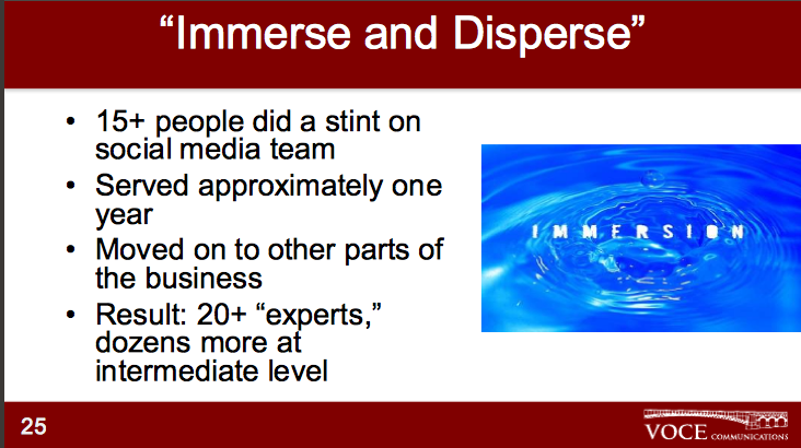 immerse and disperse