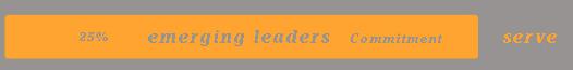 Emerging Leaders Ministry Funnel--brianbarela.com